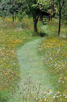 Mown path through wild flower meadow. Pinned to Garden Design by Darin Bradbury.Mown path through wild flower meadow. Pinned to Garden Design by Darin Bradbury.