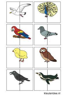 Dierenspel voor kleuters, kleuteridee.nl , animal match for preschool, free printable 5.