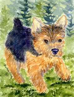 Norwich Terrier House Vertical Flag