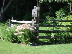 cedar rail fence with bird house and garden, beautiful.