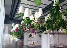 Upside down planting in The Shard, London. We didn't want to block the view, but these plants make the view inside pretty good too!