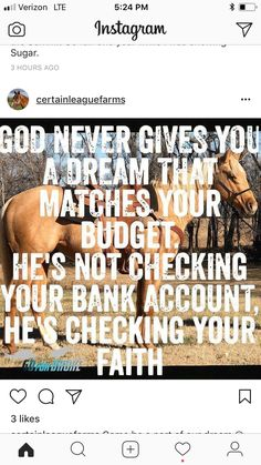 I guess our faith wouldn't grow nearly as much if our dreams and budgets matched all the time. Rodeo Quotes, Equine Quotes, Cowboy Quotes, Cowgirl Quote, Equestrian Quotes, Hunting Quotes, Hunter Jumper, Cute Quotes, Great Quotes
