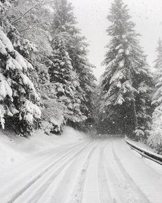Do you drive in the snow during the winter Comment down below snowy places Do you drive in the snow during the winter Comment down below snowy places snowy places Photo Credits Unknown christmaswond The Effective Pictures We Offer You About hellip Winter Szenen, Winter Love, Winter Magic, Winter Christmas, Winter Photography, Nature Photography, Winter Wallpaper, Winter Beauty, Winter Pictures
