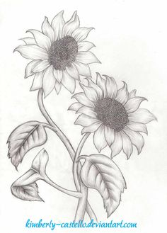 Sunflowers Sketch by kimberly-castello on DeviantArt