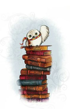 Hedwig with some Hogwarts books
