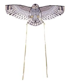 X Kites Owl Kite by X Kites #zulily