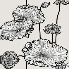 Free shipping on Lee Jofa designer wallpaper. Search thousands of patterns. Item LJ-89-5021-CS. Swatches available.