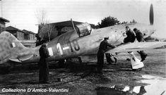 Macchi C.205 Serie III, MM 92219, 1-18, 1° Squadriglia, 1° Gruppo Caccia ANR (Asso di Bastoni), Campoformido, March 1944.