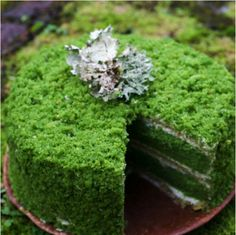 Nettle Moss Cake + Matcha Genoise Recipe - get your matcha at https://www.amazon.com/dp/B00XSAJXVQ/