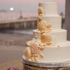 carlie statsky photography - the knot - cake