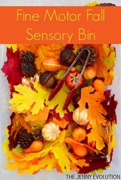 Fine Motor Fall Sensory Bin + Visual Skills! on The Jenny Evolution Fall Sensory Bin, Sensory Tubs, Sensory Boxes, Sensory Play, Toddler Sensory Bins, Sensory Motor, Fall Preschool Activities, Toddler Activities, Motor Activities