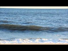 Reading the Beach - Understanding Waves & Wave Action - YouTube