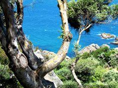 Oceano Atlântico encontra o Mar Mediterrâneo - Estreito de Gibraltar - Tanger - Marrocos - Viagem com Sabor