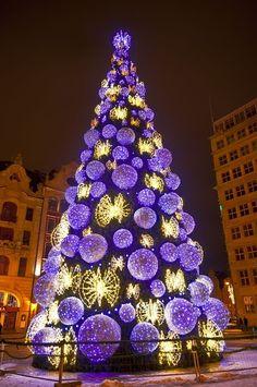 Unusual Christmas Trees, Elf Christmas Tree, Christmas World, Christmas Crafts For Gifts, Christmas Scenes, Outdoor Christmas, Christmas Tree Decorations, Christmas Holidays, Merry Christmas
