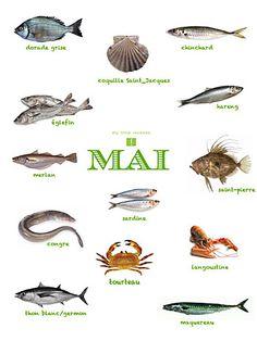 Produits de saison : les poissons du mois de mai  Fish May Vegetable Seasoning, Food Illustrations, Culinary Arts, Food Design, Fruits And Vegetables, Seafood Recipes, Food Art, Food Videos, Healthy Life