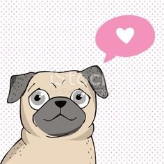 Vector illustration. Poster with a cute pug.