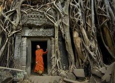 Meraviglia ad Angkor, fascino d'Oriente | Tra i segreti della #Cambogia http://www.viaggidellelefante.it/sud-est-asiatico/cambogia/