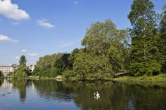 Top 10 Free Things to Do in London: London Parks & Gardens