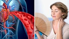 4 infusions pour accélérer votre métabolisme - Améliore ta Santé Heart Health, Hand Fan, New England, Pay Attention, Wellness, Hearts, Health, Tips, To Gain Weight
