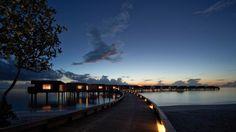 Park Hyatt Maldives Hadahaa – barefoot luxury resort in Maldives experience, a perfect private island holiday with soft sandy beaches. Scda Architects, Globe, Water Villa, Island Resort, Honeymoon Destinations, Akita, Trip Planning, Places To Go, Park