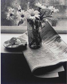 Still lifes, New York, Andre krtesz.