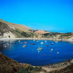 33 Beaches You'd Never Believe Were In Britain 33 Beaches You'd Never Believe Were In Britaindomnhall gleeson Places To Travel, Places To See, British Beaches, Lulworth Cove, Pergola, Beach Cove, England Beaches, Believe, Angeles
