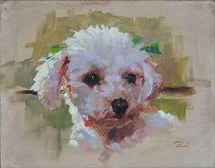Patrick Saunders Fine Arts - Dog Portrait - Painting - Oil on Canvas - Bernie's Poodle #OilPaintingDog
