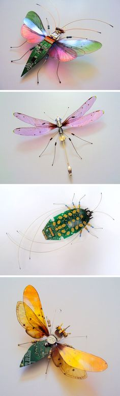 New Winged Insects Constructed from Video Game and Computer Components