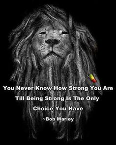 True....  & I love the Dreads on the Lion