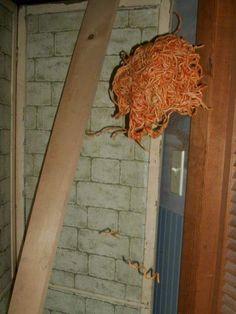Italian hornets nest<<< actual sighting of the flying spaghetti monster