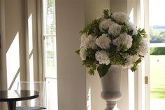 Hydrangea Urn - Helen Newman - Gallery