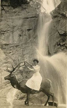 """""""All I need is a small elk and a falls to drive her by."""""""