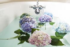 W hen I noticed that our bouquet of hydrangeas were looking a little thirsty, I thought I'd give them a nice relaxing bath. I did this ...