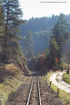 Semptemvri-Dobrinishte train runs through Balkan Alps and the views are magnificent <3 * * *  travel travelphotography Bulgaria travelbog Rhodope mountains