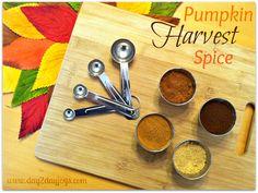 Pumpkin Harvest Spice