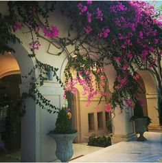 Welcome to Out of the Blue, Capsis Elite Resort. This our entrance Hotels In Crete Greece, Entrance, Sidewalk, Holiday, Blue, Entryway, Vacations, Door Entry, Side Walkway