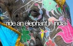 bucket list before i die – I did when I was little but I want to again