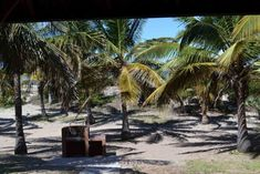 Morrumbene Beach Resort, located in the Inhambane Province of Mozambique, offers perfect weather, white sandy beaches and a beaten track to stray from Sandy Beaches, Beach Resorts, Gallery, Plants, Resorts, Planters, Plant, Planting
