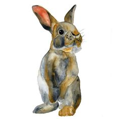 watercolour bunny
