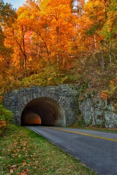 Great Smoky Mountains This tunnel is on the blue ridge parkway ive been thru it many times.i think theres 5 on this strech of road. Blue Ridge Parkway, Beautiful Places, Beautiful Pictures, Beautiful Scenery, Autumn Scenes, All Nature, True Nature, Fall Pictures, Autumn Photos