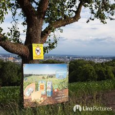 Gmundner Milch aus #Linz  . . . #milch #milk #gmunden #igerslinz #landwirtschaft #nahe #wow #skyline #upperaustria #moments #wanderlust #view #fernsicht #landscape #linzpictures #linzer #milkyway #farm #streetphotography #farming #regional #advertising #vertragsbauer #contract #mühlviertel