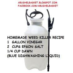 """A Bushel Basket"": HOMEMADE WEED KILLER RECIPE Weed Killer Homemade, Homemade Weed Spray, Garden Weeds, Lawn And Garden, Garden Plants, Home And Garden, Garden Fun, Organic Gardening, Gardening Tips"