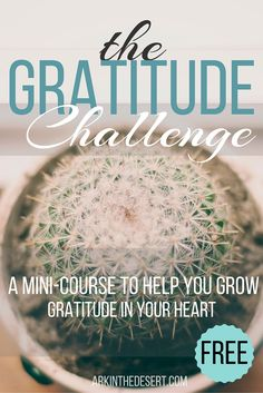 The Gratitude Challenge, for all Christians looking to get closer to Christ. This FREE mini-course will help you see God in your life through the many gifts He has blessed you with. Ready to grow your heart in gratitude??