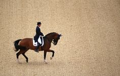 Jan Ebeling of the United States rode the horse Rafalca during the equestrian dressage team event at the 2012 Olympics (NY Times)