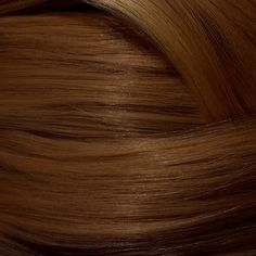 Glory Glory Say goodbye to sad, flat Hair by bringing back the heat with Golden Shades that brighten your Hair *and* your skin tone. Golden Hair Color, 2 Hair Color, At Home Hair Color, Hair Color Shades, New Hair Colors, Blonde Color, Copper Blonde, Light Ash Blonde, Dark Blonde Hair