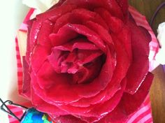 Rose from garden picked for me by my son.