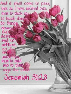 Jeremiah 31:28  (KJV)  28 And it shall come to pass, that like as I have watched over them, to pluck up, and to break down, and to throw down, and to destroy, and to afflict; so will I watch over them, to build, and to plant, saith the Lord.