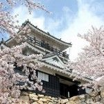 Hamamatsu Hamamatsu Hamamatsu, #Japan – #Travel Guide http://tourtellus.com/2012/08/hamamatsu-japan-travel-guide/