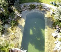 10 Eco-Friendly Natural Swimming Pools While traditional pools can be unsightly in the winter, natural pools offer year-round beauty