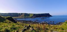 Lonely Planet, World Famous, Fauna, Belfast, Days Out, Day Tours, Zeppelin, Tour Guide, Cool Places To Visit